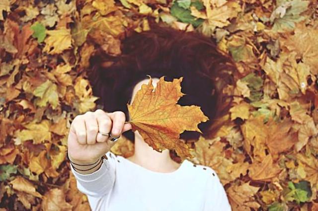 ta mua thu - Tả về mùa thu của đất trời