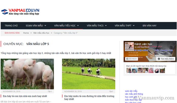 unnamed file 60 - Top 10 website những bài văn mẫu hay lớp 5 mới nhất