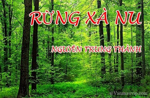 [Văn mẫu học sinh giỏi] Phân tích hình tượng cây xà nu trong tác phẩm Rừng xà nu của Nguyễn Trung Thành